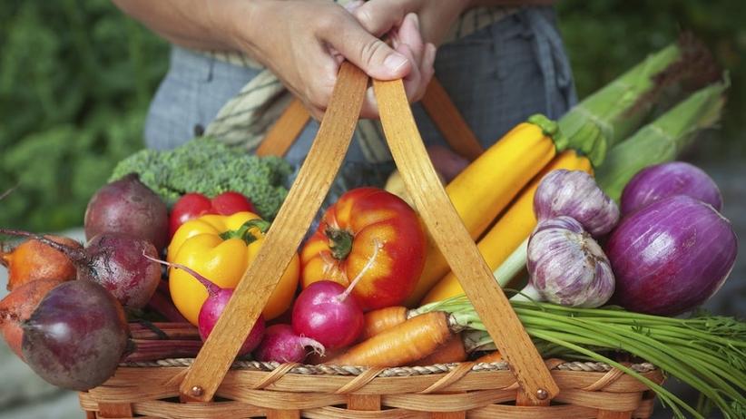 Okiem eksperta: żywność GMO ‒ czy powinniśmy się jej bać?