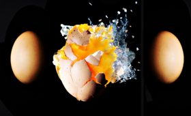 Skandal w Europie: Kto blokuje informację o skażeniu jaj fipronilem?