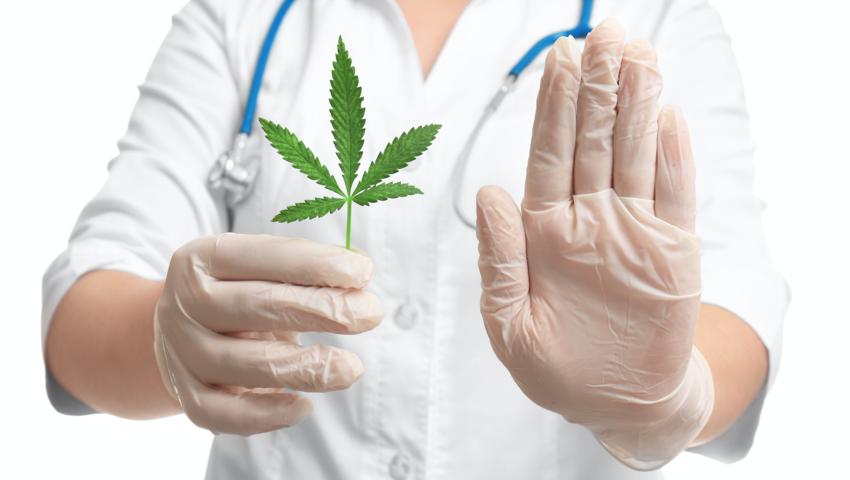 Medyczna marihuana w aptekach, Cannabis Sativa, Sativex