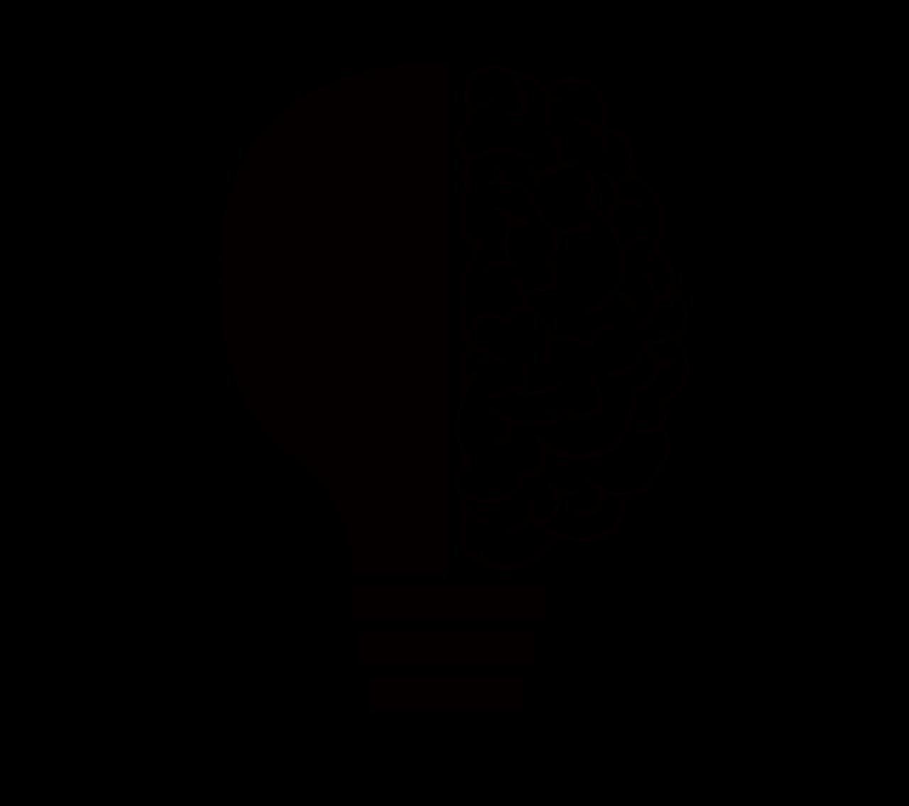 cranium-2099128_1280