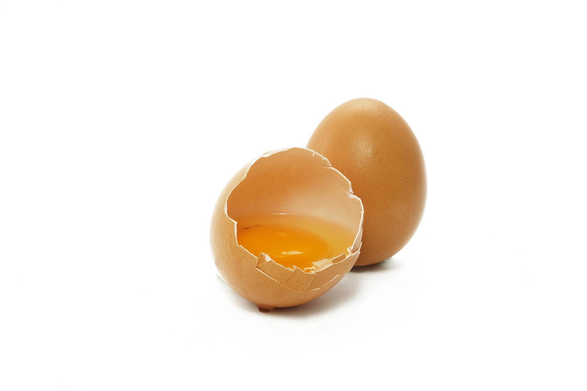 egg-2796898_1920