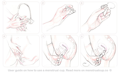 How_to_use_a_menstrual_cup - wikimedia.org