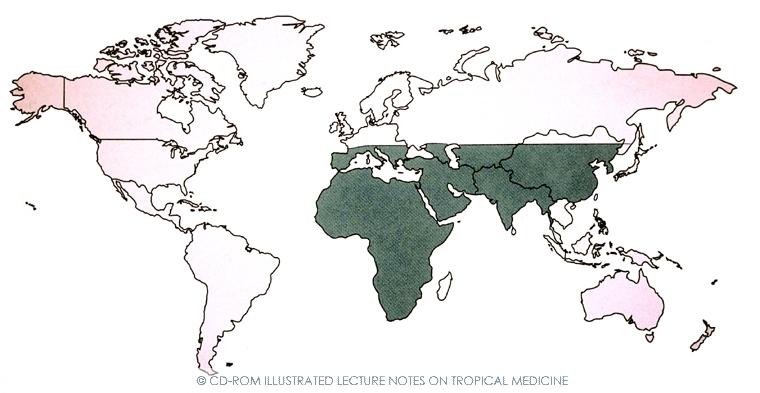 mapa_cchf