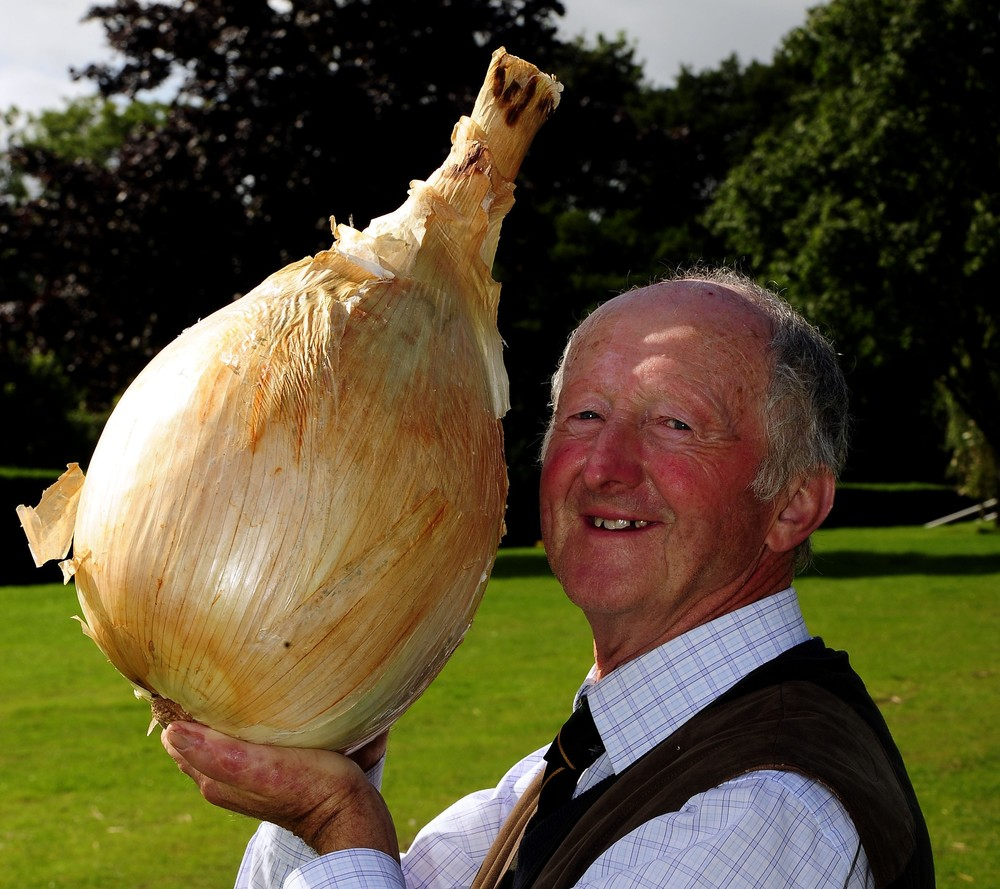 Peter Glazebrook from Newark with his world record breaking onion that weighed in at 18lbs 1oz, beating his previous world record by almost 2ozs, at...