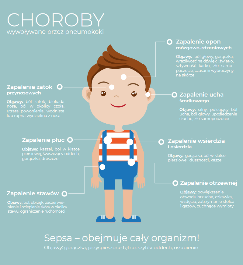 Pneumokoki infografika
