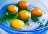 W Polsce wykryto jajka zanieczyszczone owadobójczym środkiem!