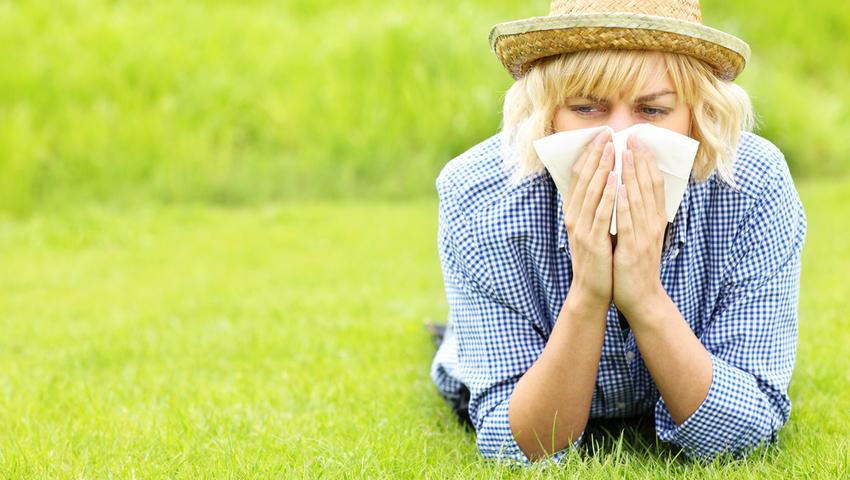 Kalendarz pylenia roślin, czyli podręcznik alergika. Kiedy pylą drzewa i trawy?