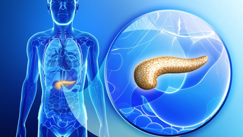 trzustka, rak trzustki, test krwi, diagnostyka raka trzustki, jak wykryć raka trzustki