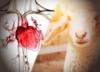 Polscy lekarze wszczepili sztuczne zastawki serca... 6 owcom!