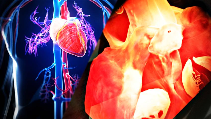 Zabrze: Powstał interaktywny model serca w rzeczywistości rozszerzonej