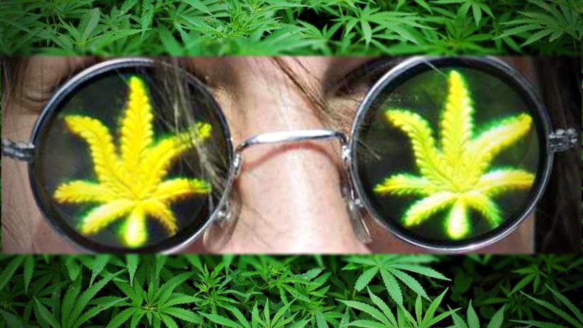Zgoda w sprawie medycznej marihuany. Ustawa bez poprawek w Senacie