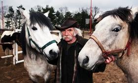 Stworzenia Pana Smolenia, czyli konie, które leczą