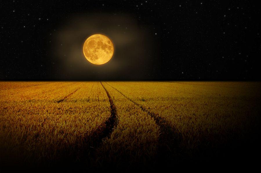 Przed nami zbożowa pełnia - jak księżyc wpływa na nasz organizm?