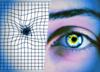 Test, który pozwala sprawdzić, czy nie grozi Ci utrata wzroku