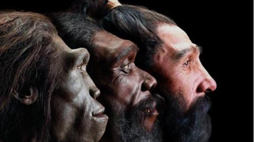 6 milionów lat ewolucji w minutę. Jak zmieniała się twarz człowieka?