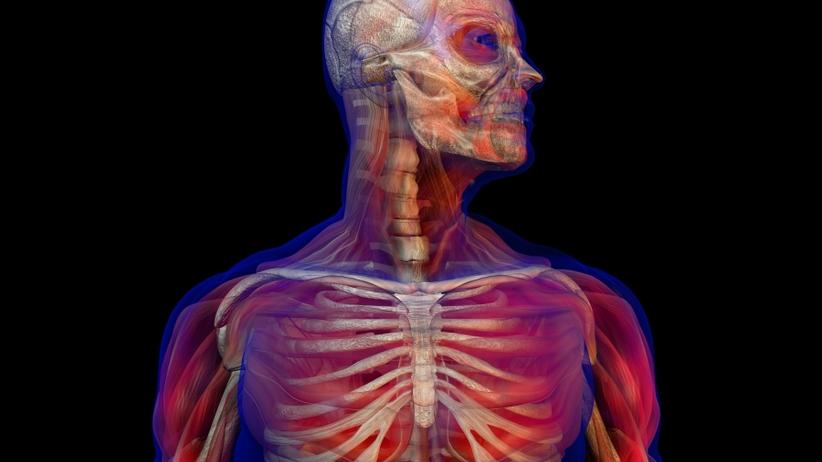 Jak długo może żyć człowiek? Naukowcy: Nie więcej niż 115 lat!