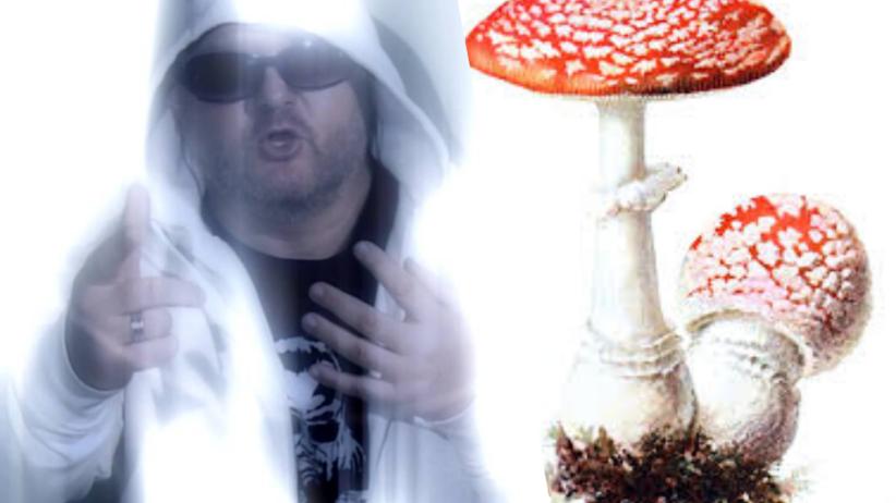 Uwaga na grzyby - ostrzega Sanepid emitując teledysk rapera GIS-u