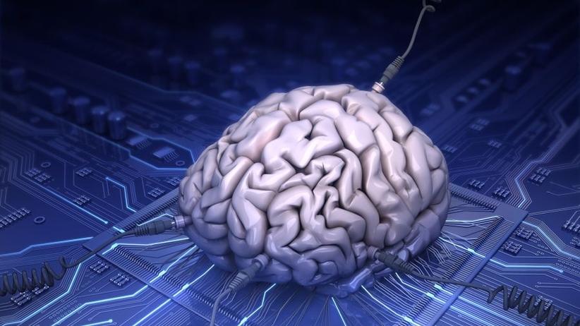 Polacy tworzą system sztucznej inteligencji dla służby zdrowia z USA