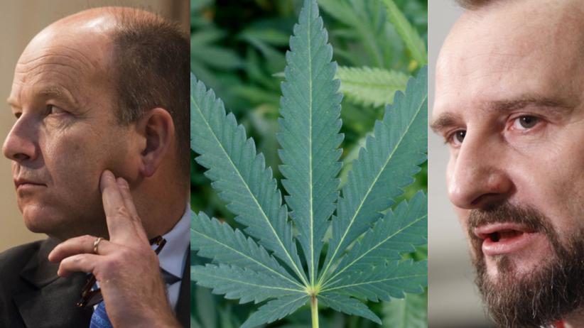 Dlaczego w Polsce nadal nie ma zmian w sprawie medycznej marihuany?