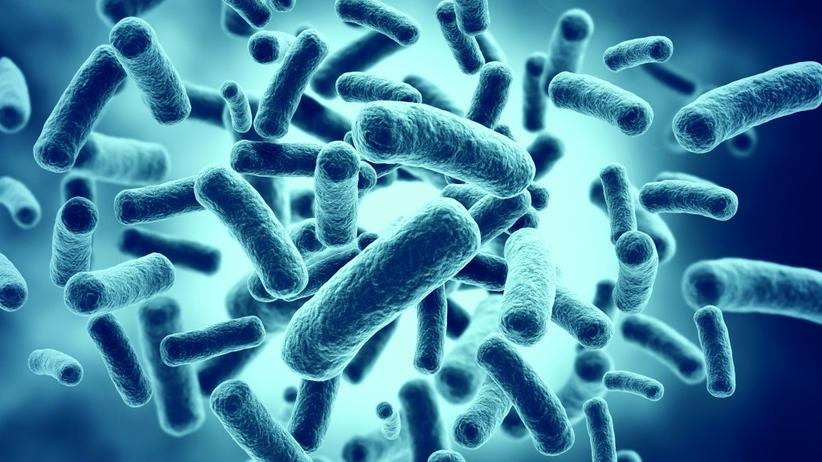 Jedziesz na egzotyczne wakacje? Uważaj na superbakterie!