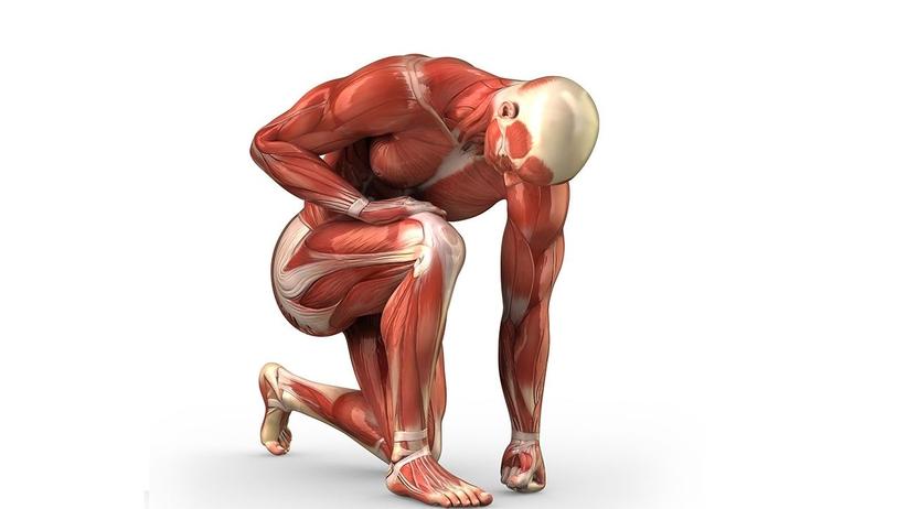 Leczenie krwiaka w mięśniu czworogłowym uda. Co robić?
