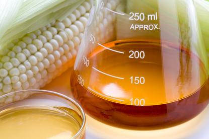 Kwasy DHA hamują szkodliwość syropu glukozowo-fruktozowego (HFCS)