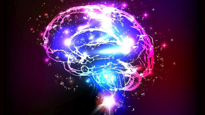 Nowa mapa mózgu zrewolucjonizuje medycynę i nowoczesne technologie?